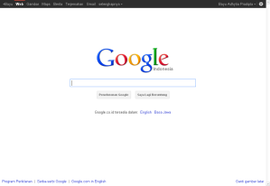 Google Search Engine and Images
